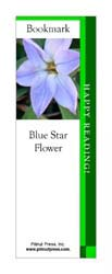 This bookmark depicts a Blue Star Flower.