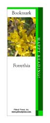 This bookmark depicts a Forsythia.