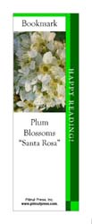This bookmark depicts Santa Rosa Plum Blossoms.