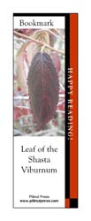 This bookmark depicts Shasta Viburnum leaf in fall.